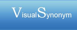 Visual Synonyms